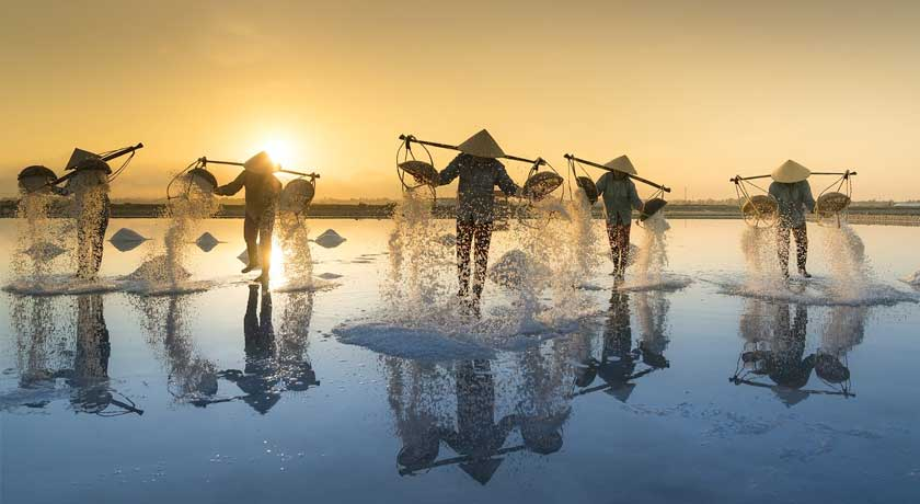 The Timeless Charm of Vietnam