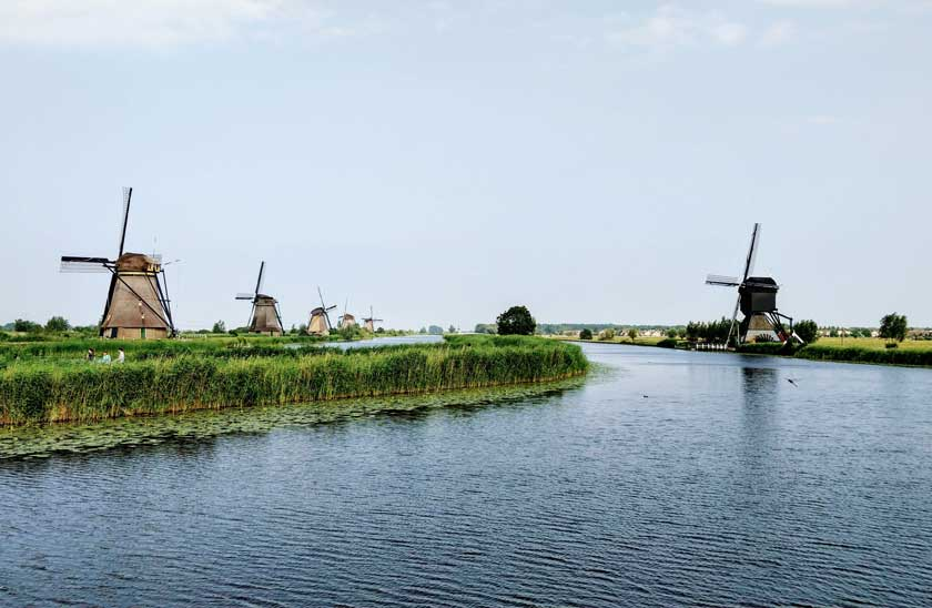 Tulips and Windmills of The Netherlands